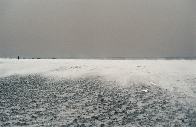 1980_Natur_Falsterbo-19