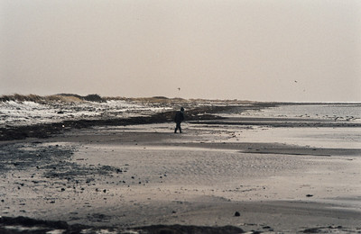 1980_Natur_Falsterbo-10