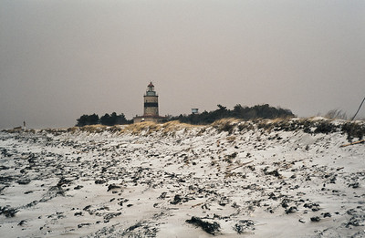 1980_Natur_Falsterbo-05