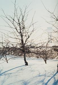1980_Malmo-07