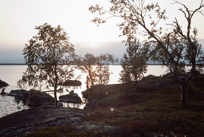 830720_Enare_Lofoten-11