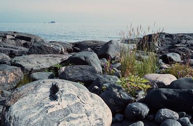 1984_Natur_Pellinge-09