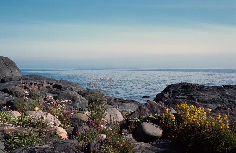 1984_Natur_Pellinge-04