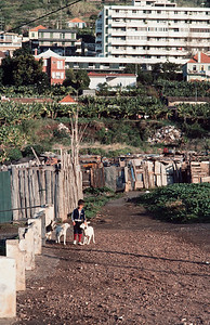 850103_Madeira-78