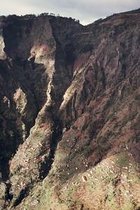 850103_Madeira-43
