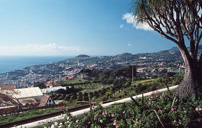 850103_Madeira-01