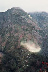 850103_Madeira-44