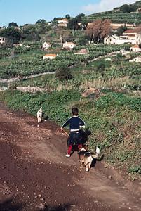 850103_Madeira-77