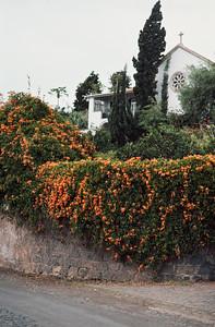850103_Madeira-97