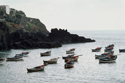 850103_Madeira-60