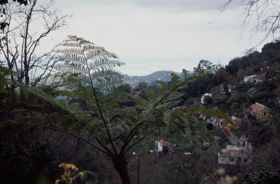 850103_Madeira-30