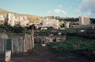 850103_Madeira-76