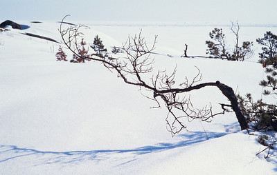 960404_Gasholmen-08
