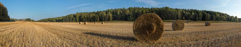 Åvadalen, Haninge, 2013-09-12 17:16