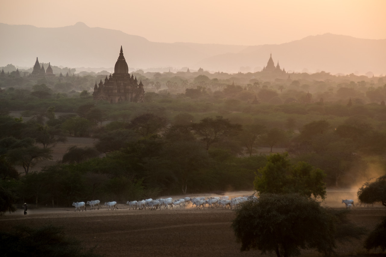 Photo: 2015-02-12-Myanmar-220.jpg