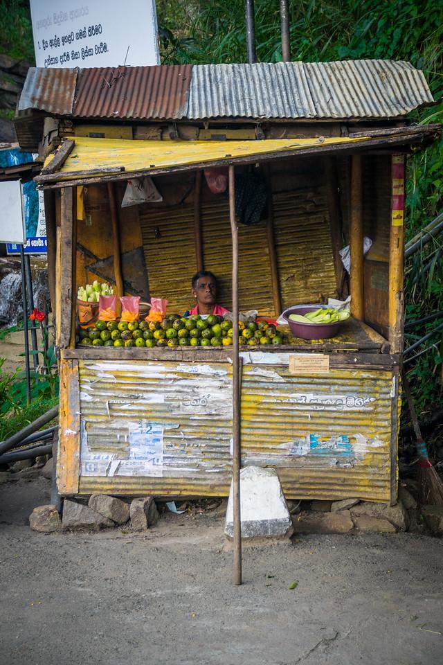 Photo: 2016-01-04-Sri-Lanka-65.jpg