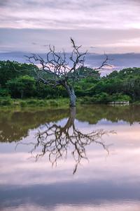 2016-01-04-Sri-Lanka-44-Edit.jpg