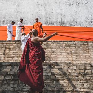 2016-01-12-Sri-Lanka-221.jpg