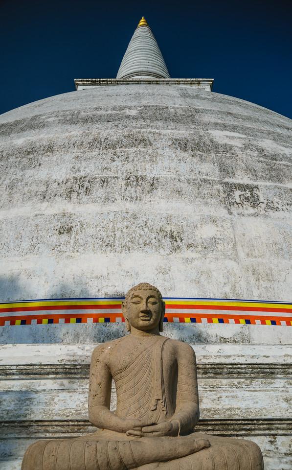 Photo: 2016-01-12-Sri-Lanka-185.jpg