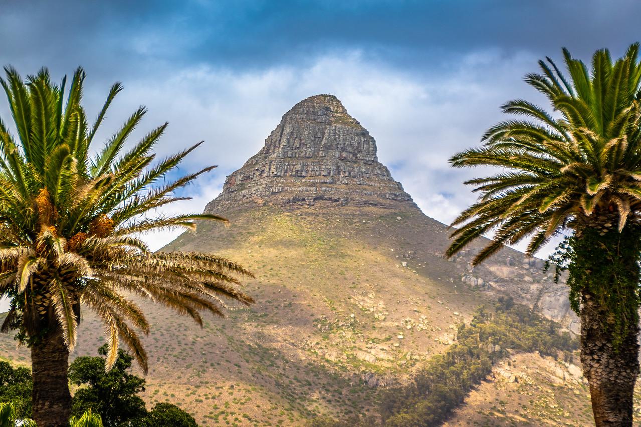 Photo: 2019-01-19-Zuid-Afrika-0345.jpg