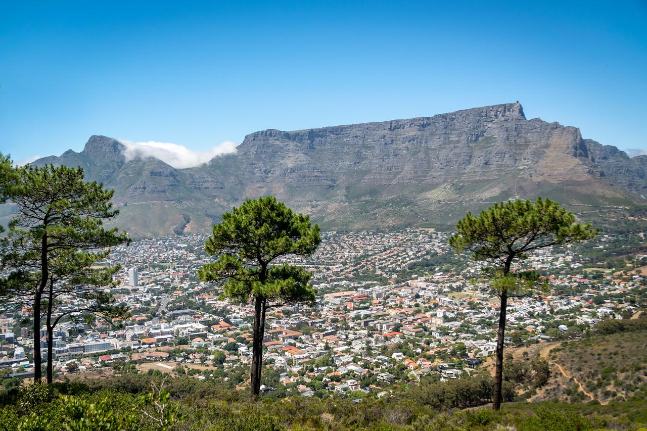 Photo: 2019-02-09-Zuid-Afrika-2884-Edit.jpg