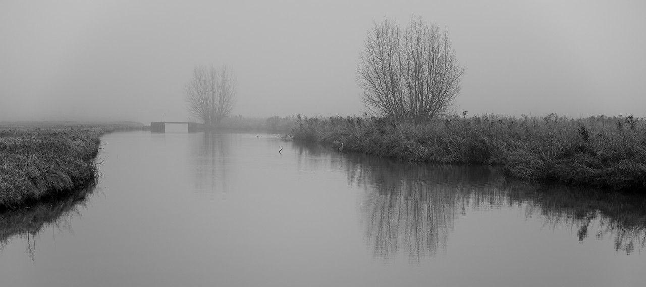 Photo: 2021-01-02-untitled-15.jpg