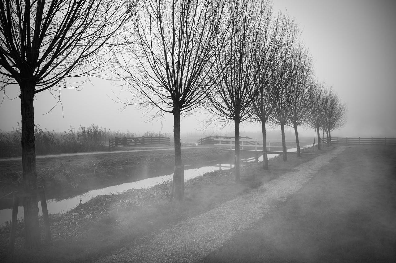 Photo: 2021-01-02-untitled-56-Edit.jpg