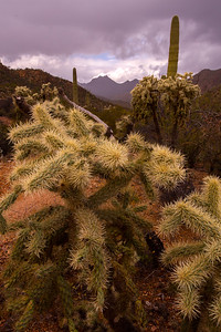 Tucson Mountains during a storm, Pima County, Arizona