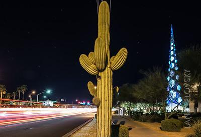 Cactus + Spire