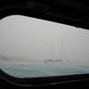 IMG_1028.jpg<br /> Cruising Aruba.<br /> Gecko hiding inside but still making photo's