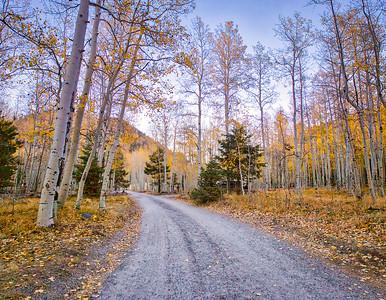 Lockett meadow in Fall