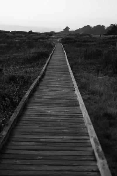 Cambria Beach