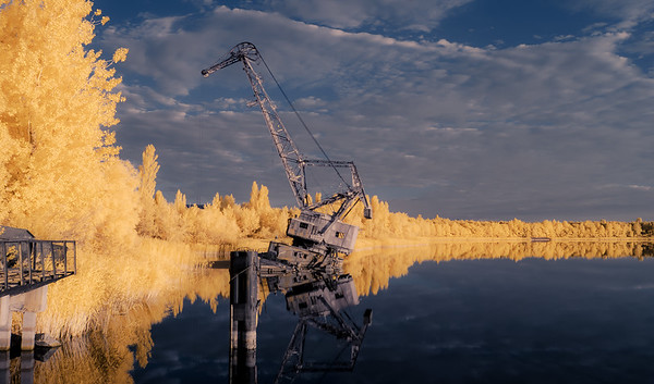 Sunken Crane