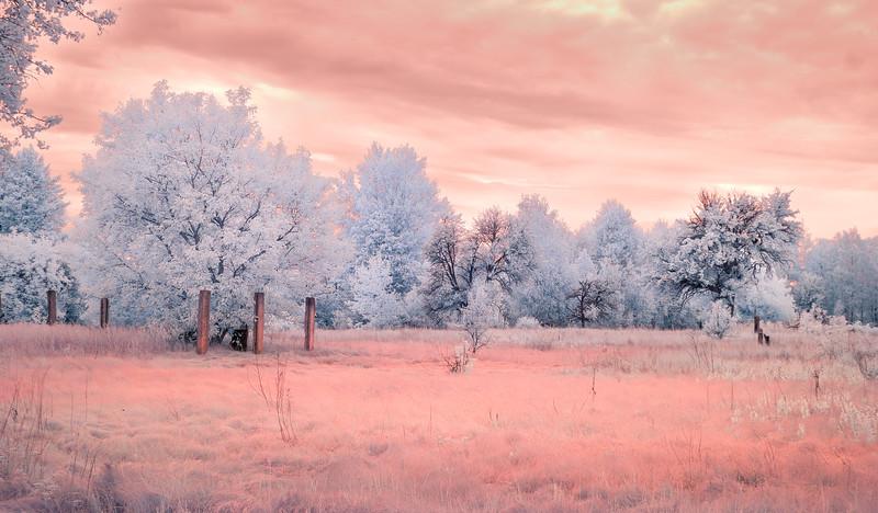 Heated Landscape