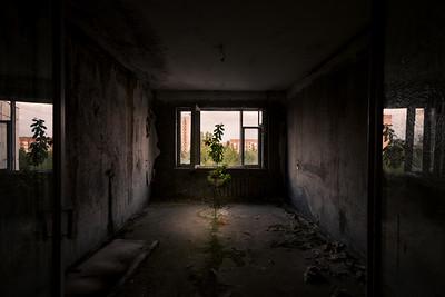 Chernobyl 2015