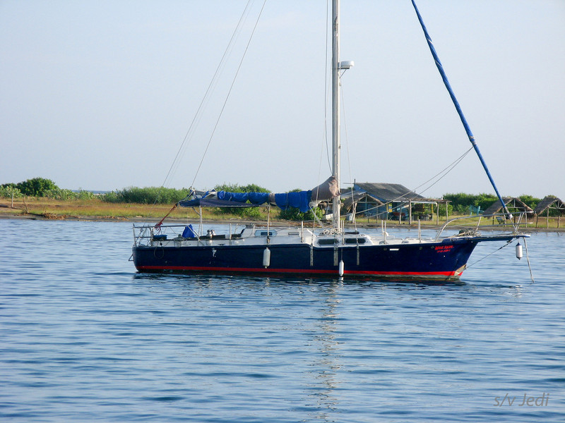 IMG_1226.JPG<br /> Cruising Colombia: Puerto Velero.<br /> Permanent resident.