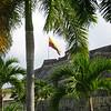 IMG_1265.jpg<br /> Cruising Colombia: Cartagena<br /> Castillo San Felipe