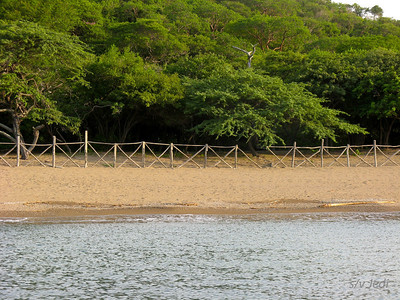 IMG_1177.JPG Cruising Colombia: Bahia Gairaca. We have no clue what the fence is for...