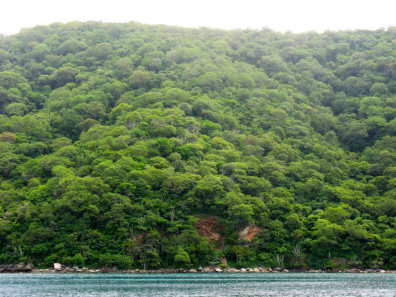 IMG_1168.JPG<br /> Cruising Colombia: Bahia Gairaca.<br /> We came from a savannah but are in dense jungle and mountains now.