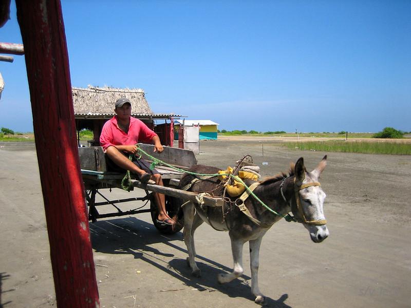 IMG_1230.jpg<br /> Cruising Colombia: Puerto Velero.<br /> Puerto Velero ashore. Nice place, the kind with Pink Floyd music!