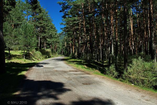 El camino de regreso es más suave y casi todo bajada.<br /> <br /> The way back is not steep and most of it downhill.