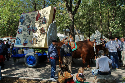 Una de las más de 100 carretas que desfilaron. Cuando yo llegué, ya habían desfilado casi todas.  Une of the more than 100 decorated wagons that paraded. When I arrived most of them had already paraded in from of the chapel