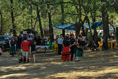 El bosuqe de robles proporciona muchos sitios para poder comer a la sombra.  The oak forest allows many shady places to have lunch.