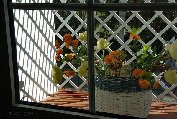 La ventana del cuarto de las tías ayer.
