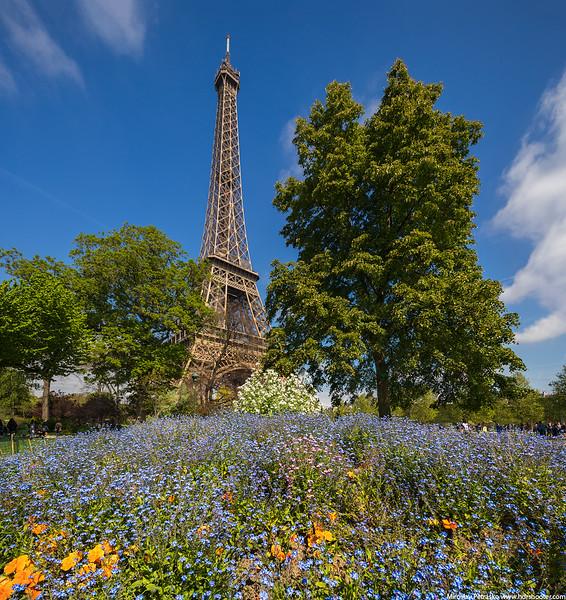 Paris-IMG_9400-Pano-web