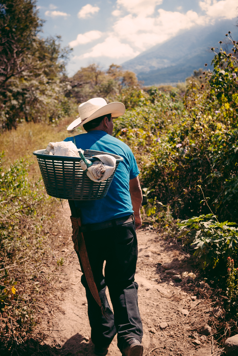 Our farmer, Don Filiberto, leading the way up the mountainside.