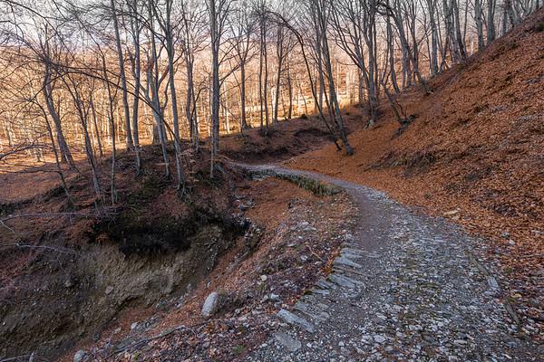 Hiking Bré to Monte Boglia (01.04.2018)
