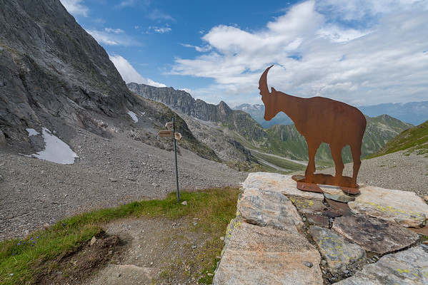 Pardatsch - Medelserhütte SAC (03.08.2017)