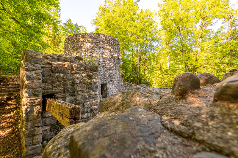 Burgruine Wildenburg I