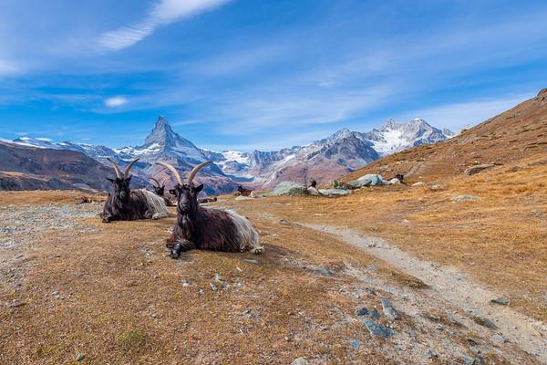 Zermatt (23.10.2018)